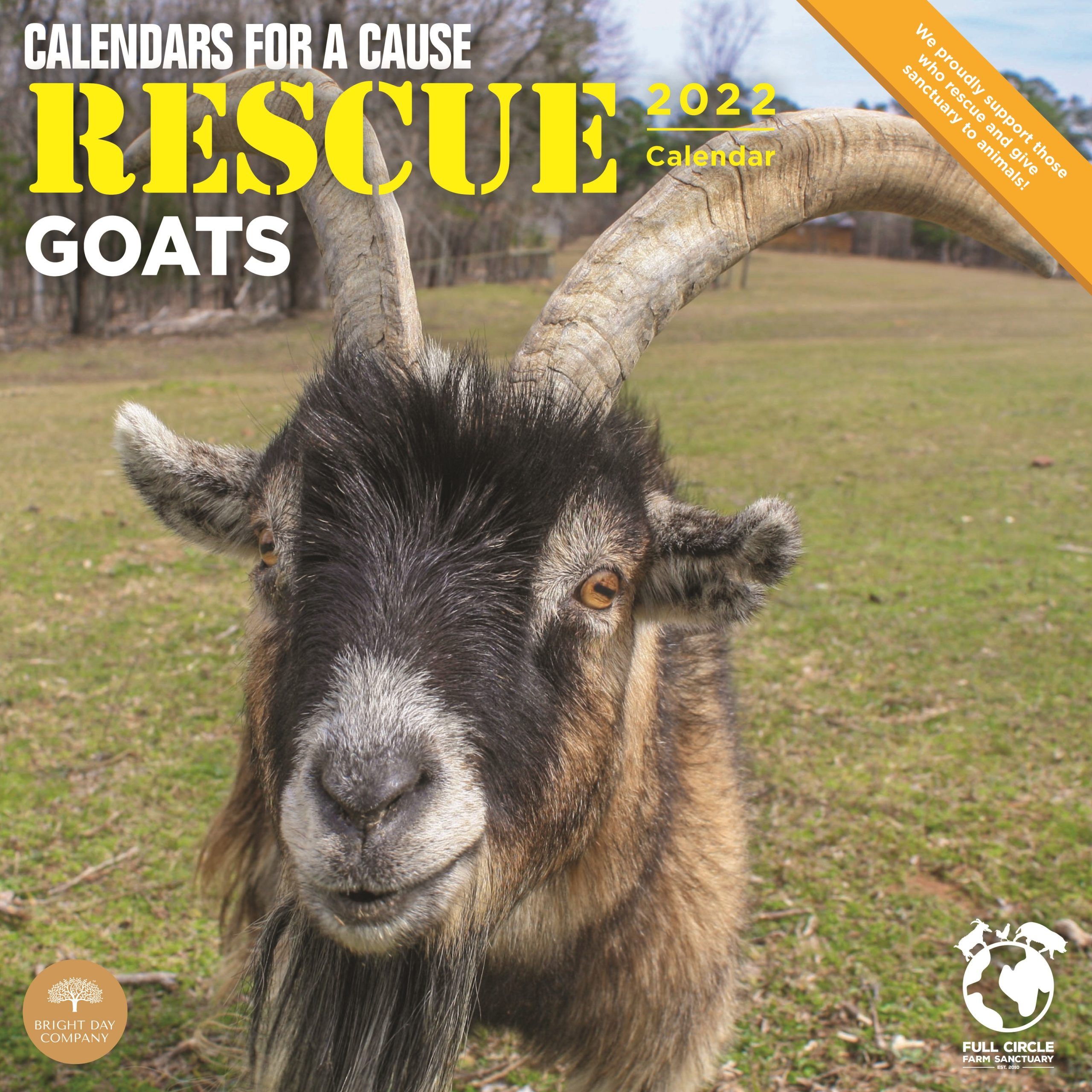 2022 Rescue Goats Calendars for a Cause Wall Calendar by Bright Day, 12 x 12 Inch