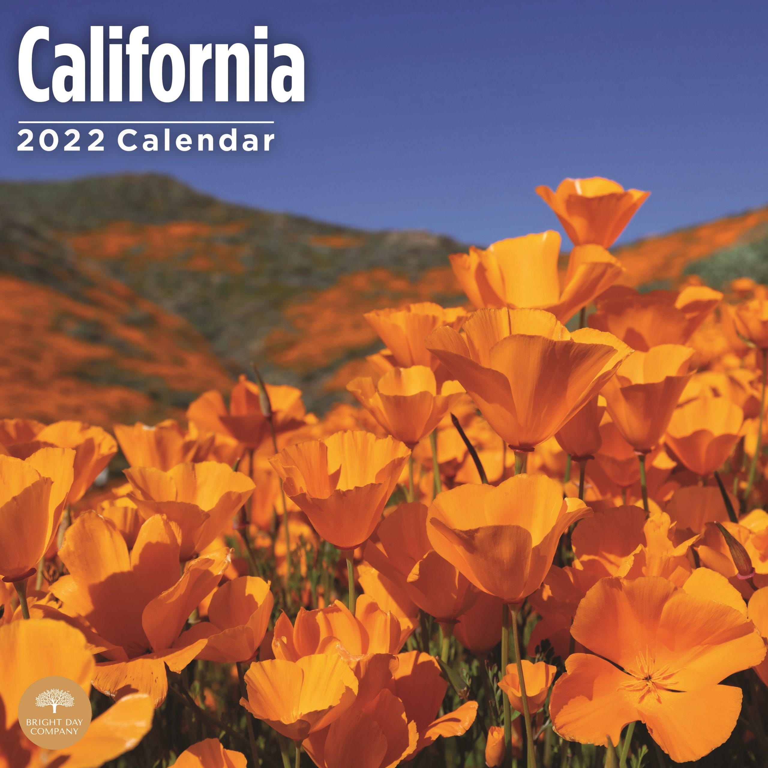2022 Home Sweet Home California Wall Calendar by Bright Day, 12 x 12 Inch